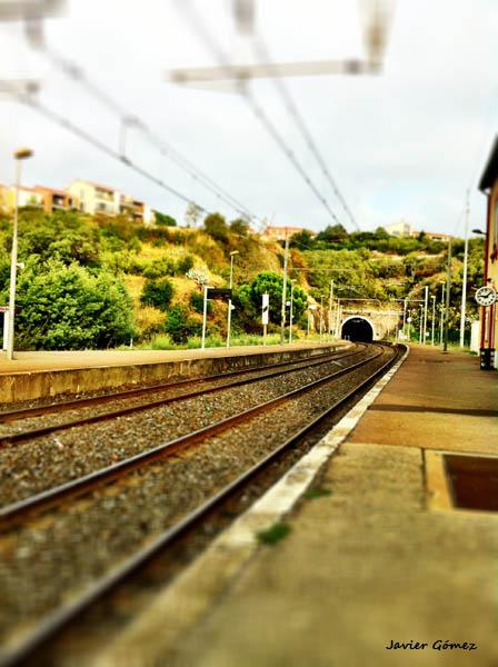 Vias de tren en Collioure