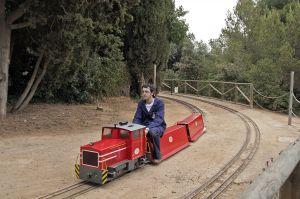 tren-en-miniatura